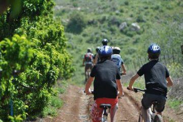 יום כיף וגיבוש בעמק הירדן והחולה